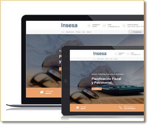Desarrollo Website INSESA