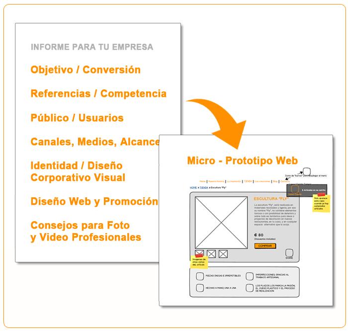Micro-Consultoría Web